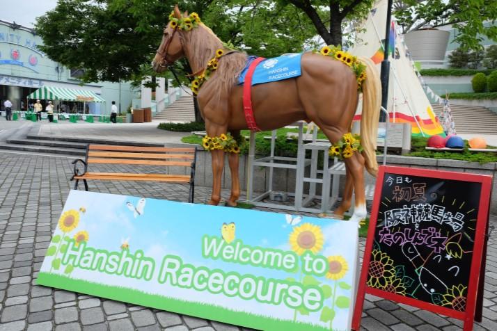 ピクニックガーデンフェスタ@JRA阪神競馬場に出展しました。